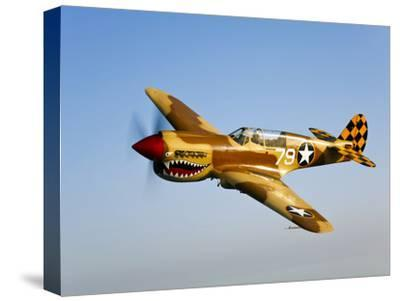 A P-40N Warhawk in Flight-Stocktrek Images-Stretched Canvas Print