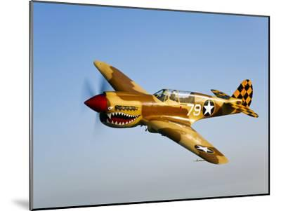 A P-40N Warhawk in Flight-Stocktrek Images-Mounted Photographic Print