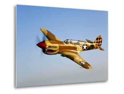 A P-40N Warhawk in Flight-Stocktrek Images-Metal Print