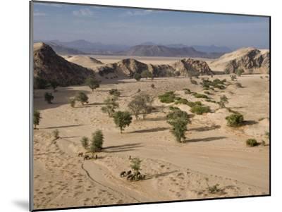 Desert Elephants and Trees-Michael Poliza-Mounted Photographic Print