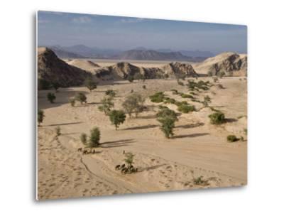 Desert Elephants and Trees-Michael Poliza-Metal Print