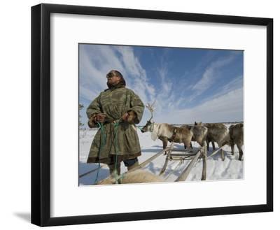 Reindeer Rest after Wallowing Through Deep, Wet Spring Snow-Gordon Wiltsie-Framed Photographic Print