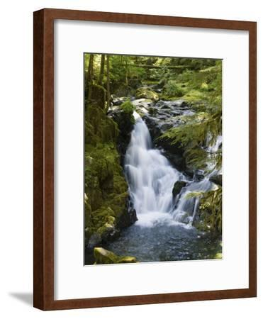 Waterfalls of Sol Duc River, Olympic National Park, Washington-Konrad Wothe-Framed Photographic Print