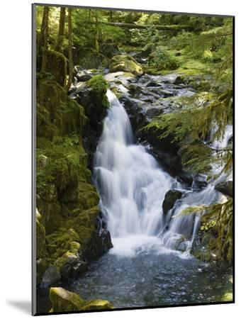 Waterfalls of Sol Duc River, Olympic National Park, Washington-Konrad Wothe-Mounted Photographic Print