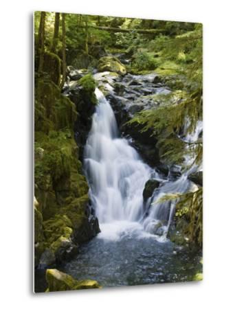 Waterfalls of Sol Duc River, Olympic National Park, Washington-Konrad Wothe-Metal Print