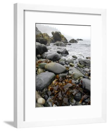 Seaweed Among Stones on a Rocky Shore with Gentle Surf-Anne Keiser-Framed Photographic Print