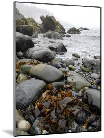 Seaweed Among Stones on a Rocky Shore with Gentle Surf-Anne Keiser-Mounted Photographic Print
