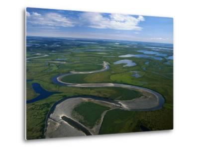 Tundra in Alaska-Danny Lehman-Metal Print