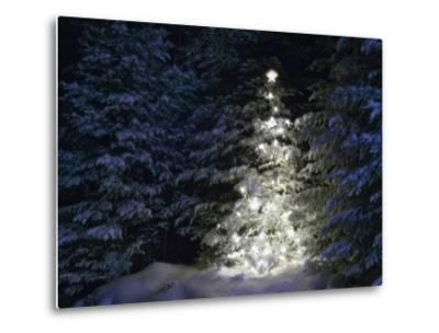 Illuminated Christmas Tree in Snow-Larry Williams-Metal Print
