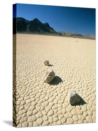 Dried clay, Death Valley, Nevada, USA-Frank Lukasseck-Stretched Canvas Print