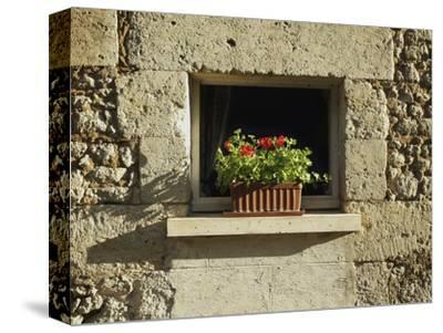 Red Geraniums on a window sill--Stretched Canvas Print