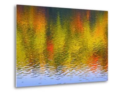 Fall Trees Reflected in Lake-Owaki-Metal Print