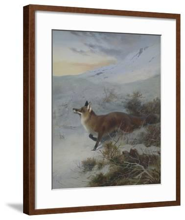 A Fox in a Winter Landscape-Archibald Thorburn-Framed Giclee Print