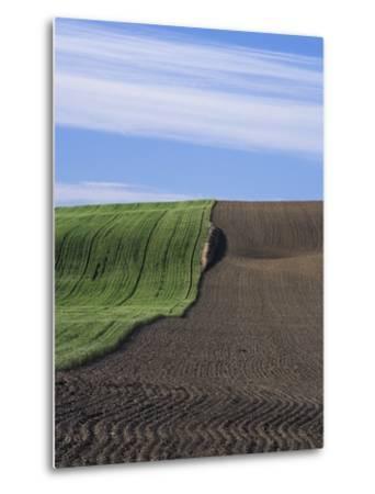 Wheat Field and Plowed Land-Frank Lukasseck-Metal Print