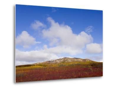 Mountain Range in Tundra Landscape-John Eastcott & Yva Momatiuk-Metal Print