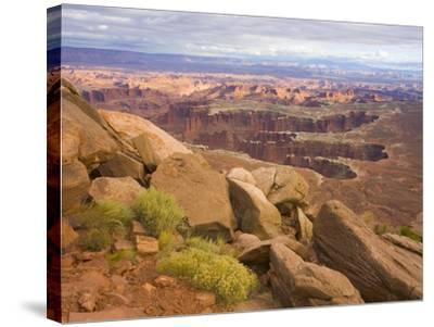 Canyon in Desert Landscape-John Eastcott & Yva Momatiuk-Stretched Canvas Print