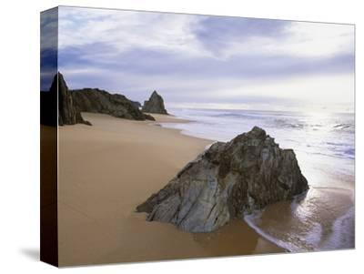 Beach at Mimosa Rocks National Park in Australia-Theo Allofs-Stretched Canvas Print