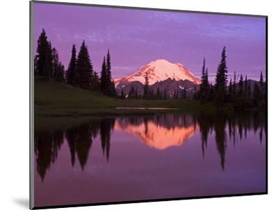 Mount Rainier and Tipsoo Lake-Craig Tuttle-Mounted Premium Photographic Print