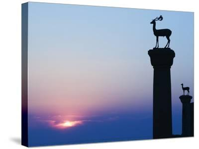 Stag Column-Walter Bibikow-Stretched Canvas Print