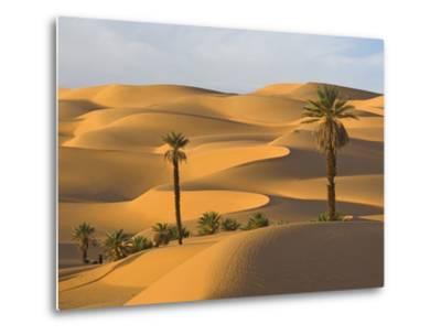 Palm Trees in Desert-Frank Lukasseck-Metal Print