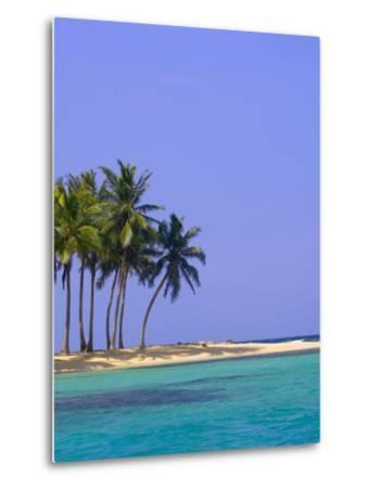 Palm Trees on Pelican Island-Blaine Harrington-Metal Print