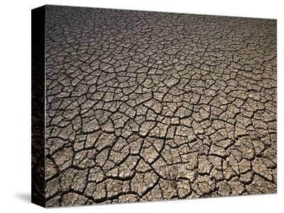 Eroding Ground of Desert-Tim Tadder-Stretched Canvas Print