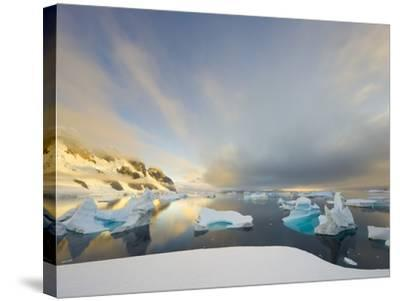 Evening Light on Mountains and Icebergs on Antarctic Peninsula-John Eastcott & Yva Momatiuk-Stretched Canvas Print