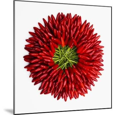 Chili Peppers--Mounted Premium Photographic Print