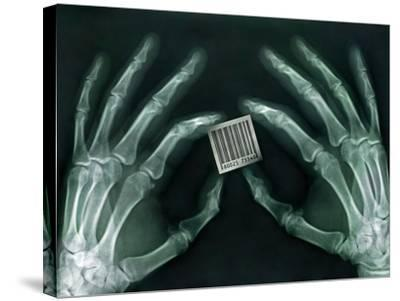 Skeletal Hands Holding Barcode-Thom Lang-Stretched Canvas Print