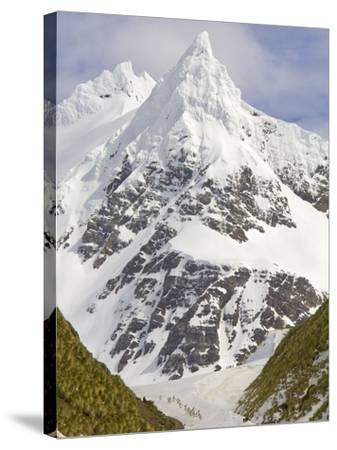 Snowy Peak Towering over King Penguins and Fur Seals-John Eastcott & Yva Momatiuk-Stretched Canvas Print