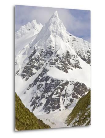 Snowy Peak Towering over King Penguins and Fur Seals-John Eastcott & Yva Momatiuk-Metal Print
