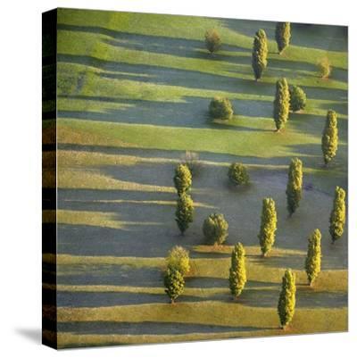Rhineland, Germany-George Hammerstein-Stretched Canvas Print