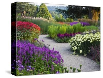 Path in Trentham Gardens-Clive Nichols-Stretched Canvas Print