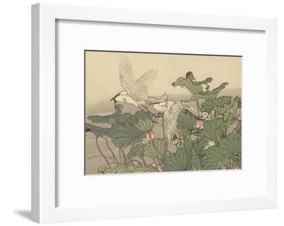 Egrets and Lotus-Imao Keinen-Framed Giclee Print