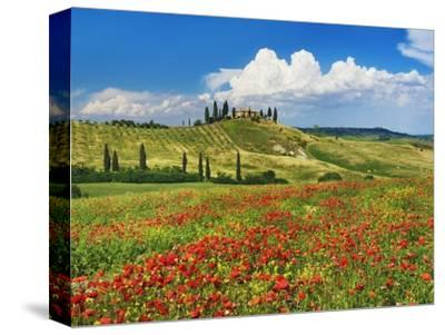 Farmhouse with Cypresses and Poppies-Frank Krahmer-Stretched Canvas Print