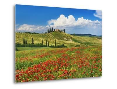 Farmhouse with Cypresses and Poppies-Frank Krahmer-Metal Print