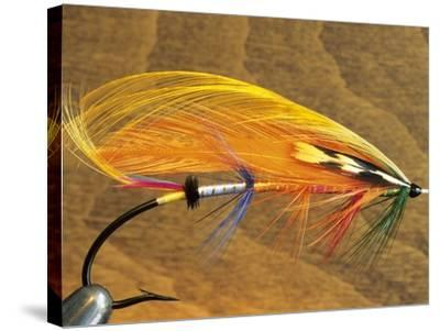 Atlantic Salmon Fly in Flytying Vise, Canada.-Keith Douglas-Stretched Canvas Print