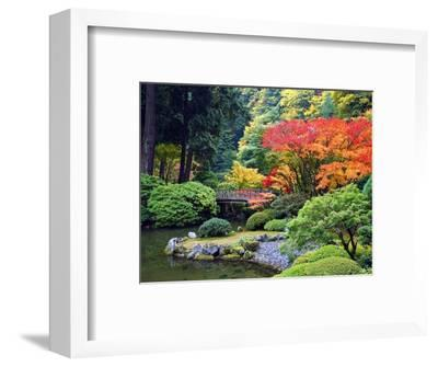 Fall Colors at Portland Japanese Gardens, Portland Oregon-Craig Tuttle-Framed Premium Photographic Print