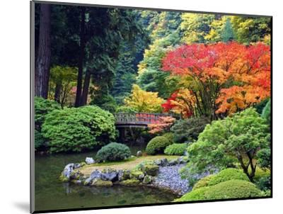 Fall Colors at Portland Japanese Gardens, Portland Oregon-Craig Tuttle-Mounted Premium Photographic Print