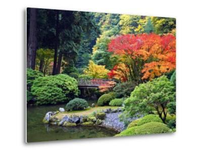 Fall Colors at Portland Japanese Gardens, Portland Oregon-Craig Tuttle-Metal Print