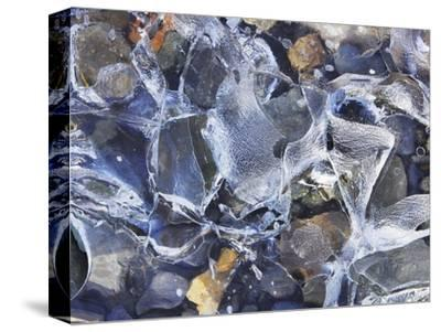 Ice detail and pebbles-Frank Krahmer-Stretched Canvas Print