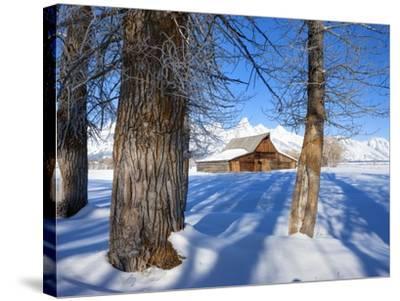 Barn below Teton Range in winter-Frank Lukasseck-Stretched Canvas Print