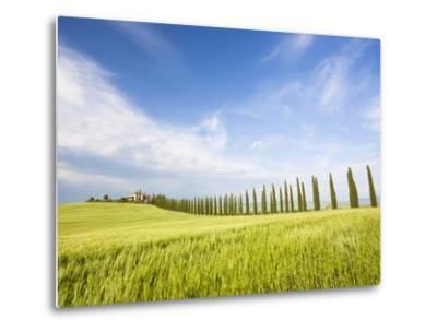 Tuscan landscape-Frank Lukasseck-Metal Print