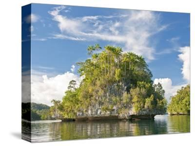 Indonesian islands-Fadil-Stretched Canvas Print