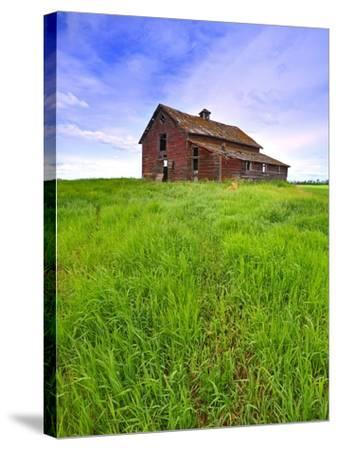 Abandoned red barn sitting on the top of a hill on a pioneer homestead in rural Alberta Canada-Robert McGouey-Stretched Canvas Print