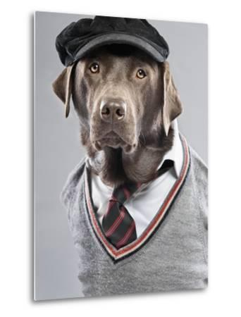 Dog in sweater and cap-Justin Paget-Metal Print