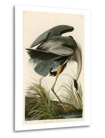 Great Blue Heron-John James Audubon-Metal Print