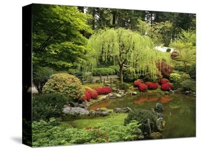 Japanese Garden Pond-Craig Tuttle-Stretched Canvas Print