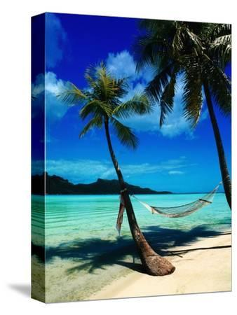 Hammock Hanging Seaside-Randy Faris-Stretched Canvas Print