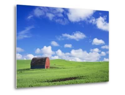 Old Barn Amidst Pea Field-Terry Eggers-Metal Print